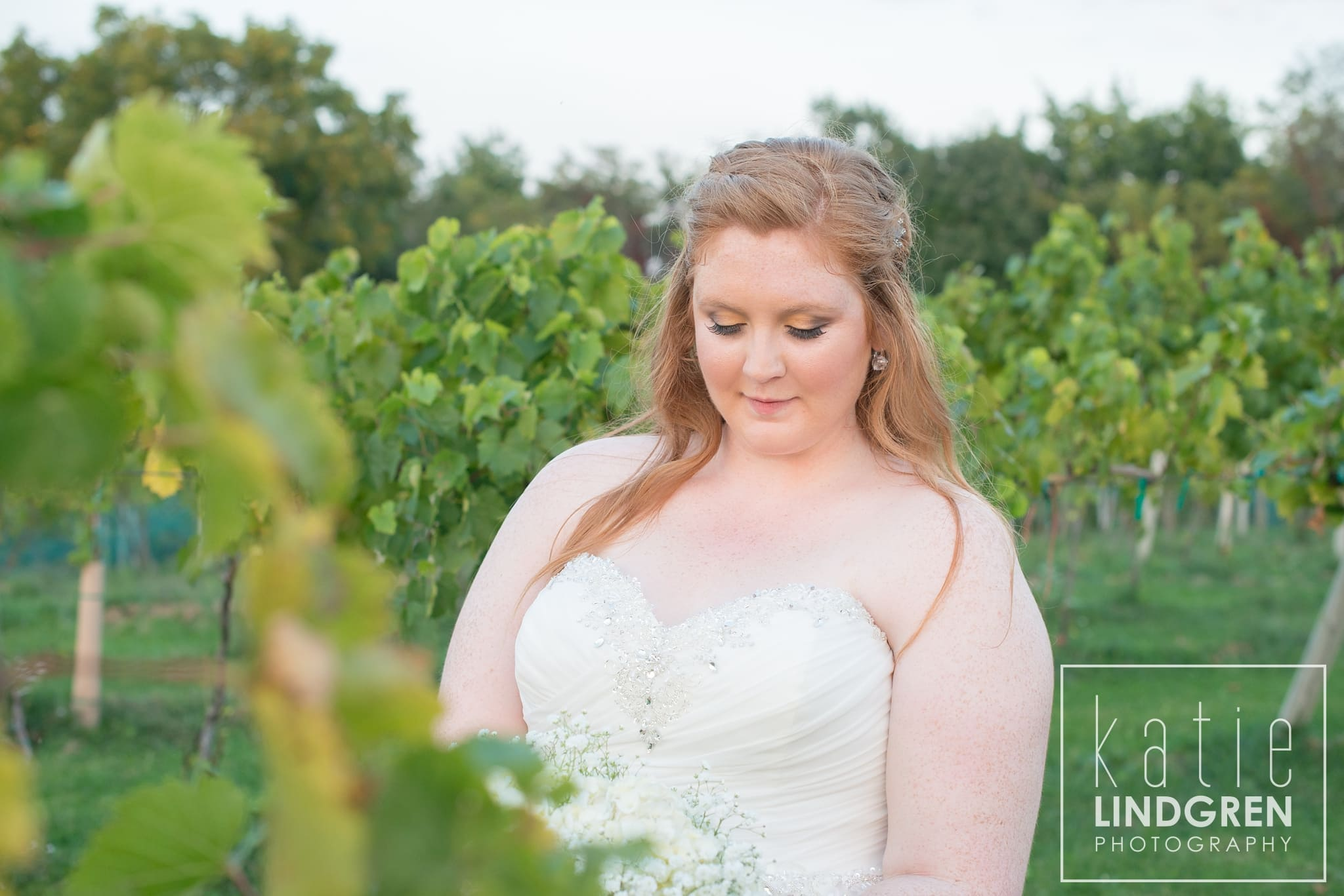 Summerset Winery Wedding