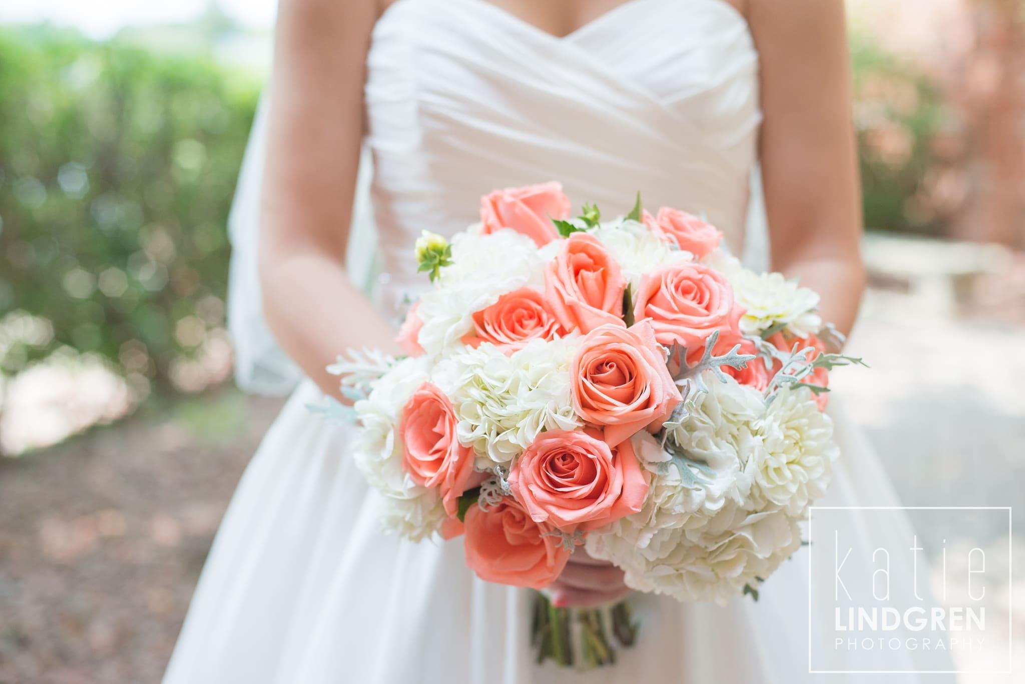 Bridget Amp Jesse Des Moines Ia Wedding Photographer